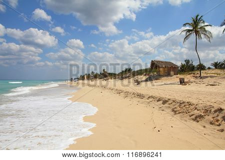 Cuban Coast