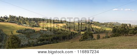 farmland, forest, and mountains in Ethiopian highlands, wide panorama