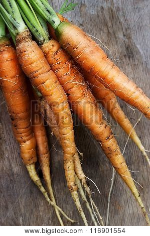 Carrots on the wooden table