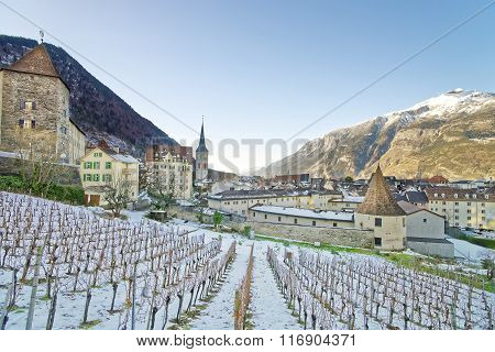 St Martin Church And Vineyard Of Chur At Sunrise