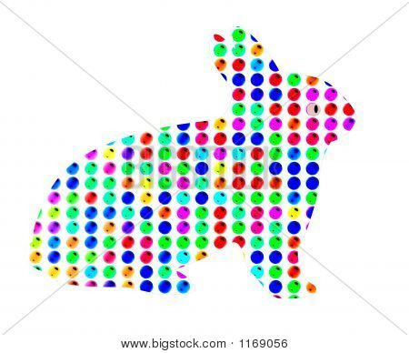 Colorful Bunny Rabbit On White