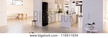 Contemporary Design Light Kitchen