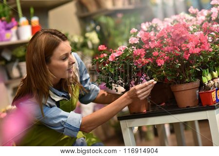 Woman working in flower shop