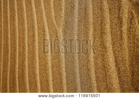 In Lanzarote  Spain    A  Dry Sand And The Beach