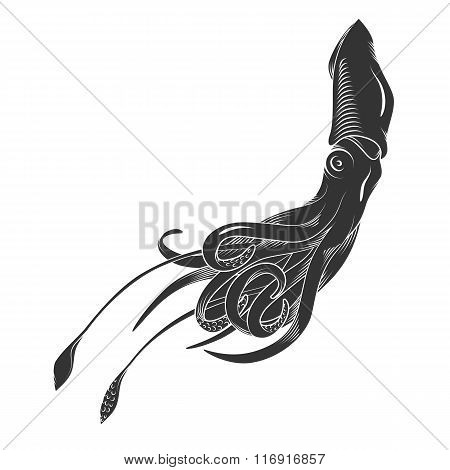 Black danger cartoon squid, calamary characters with curling tentacles swimming underwater, isolated