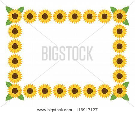 Horizontal frame with flowers.
