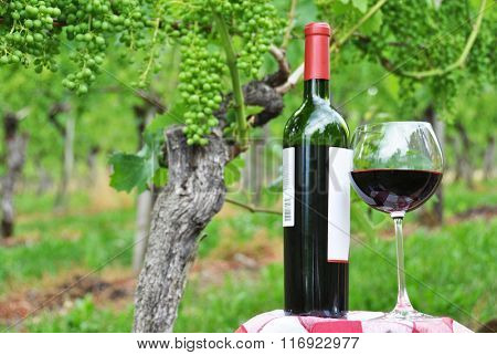 Red wine against vineyards