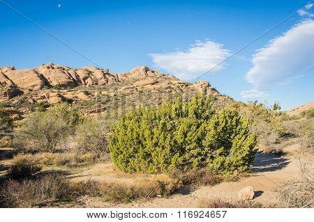 Mojave Desert Santa Clarita California