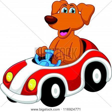 vector illustration of Cute dog cartoon driving car