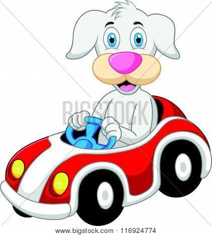 vector illustration of Dog cartoon driving car