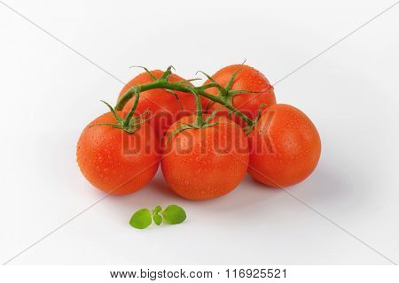bunch of washed tomatoes on white background