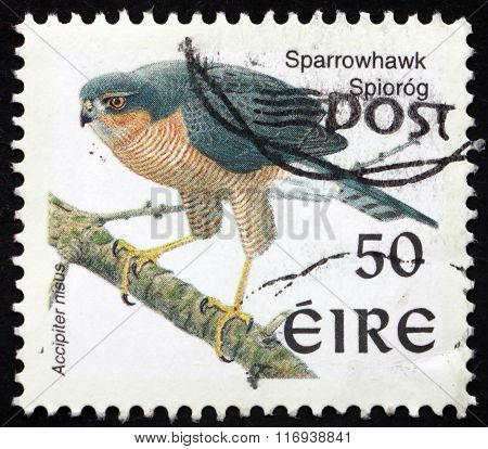 Postage Stamp Ireland 1998 Sparrowhawk, Bird Of Prey