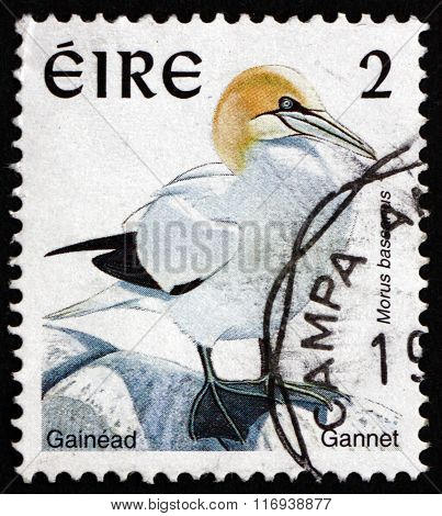 Postage Stamp Ireland 1997 Northern Gannet, Seabird