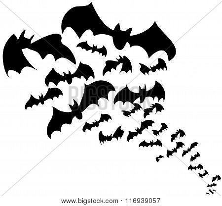 Black bats vector