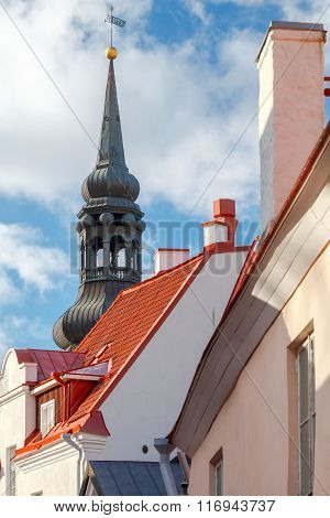 Tallinn. The Dome Cathedral.