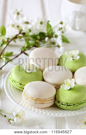 Vanilla And Pistachio Macaroon