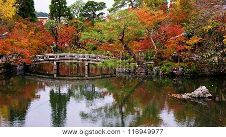 Autumn Garden At Eikando Temple, Kyoto