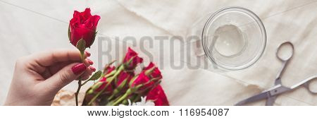 Holding Red Rose
