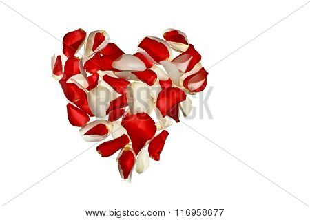 Heart of rose petals on white background
