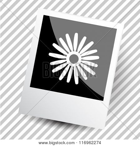 camomile. Photoframe. Raster icon.