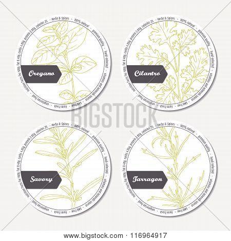 Set of stickers for package design with  oregano, tarragon, savory, cilantro