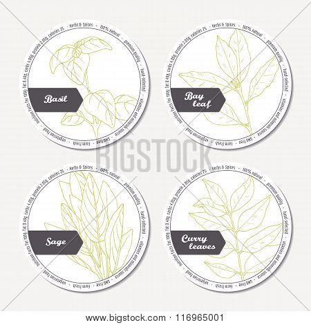 Set of stickers for package design with sage, bay leaf, basil, curry