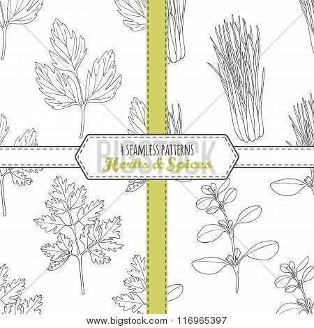Hand drawn seamless patterns collection with lovage, lemongrass, chervil, marjoram