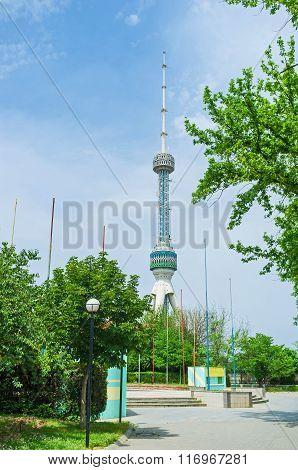 The Tv Tower In Tashkent