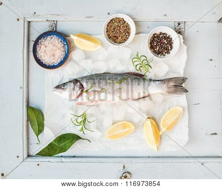 Fresh uncooked seabass fish with lemon, herbs, ice and spices on rustic blue wooden board backdrop,