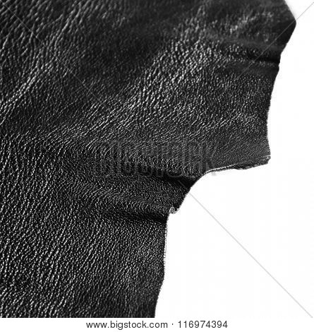 Black leather texture on white background, close up