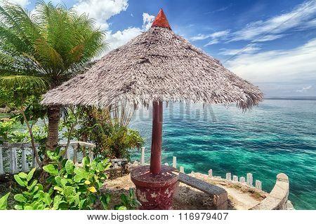 Tropical Island Beach Landscape