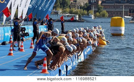 Male Swimming Competitors When The Start Signal Goes