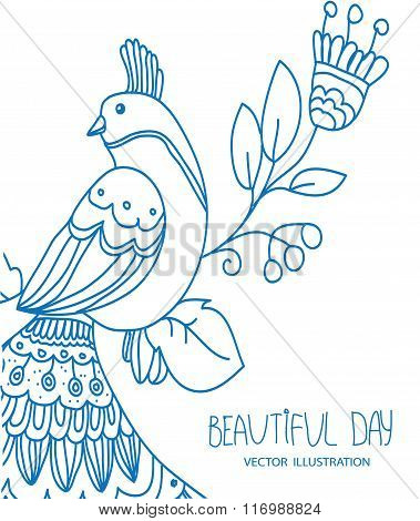 background with linear drawing birds with designs