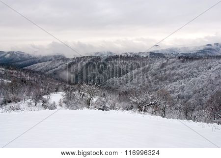 Witer Mountain Landscape