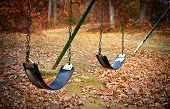 picture of swingset  - An old swingset in a park during the autumn season - JPG