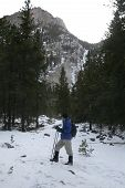 pic of beartooth  - hiking up the lake fork in montana - JPG