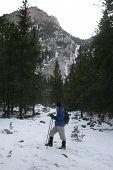 stock photo of beartooth  - hiking up the lake fork in montana - JPG