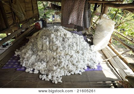 Cotton Material Process Pile