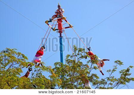 Flying Mayans.