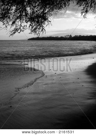 Maui Shoreline 2 Bw
