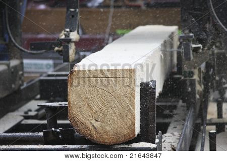 Cutting Logs Into Boards