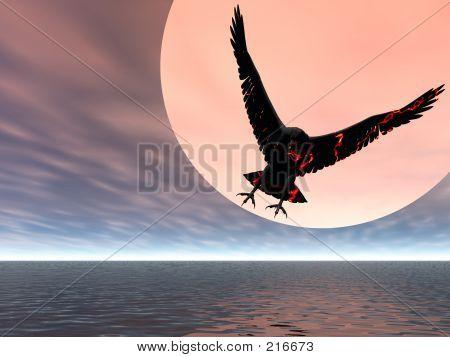 Fire Eagle Returning