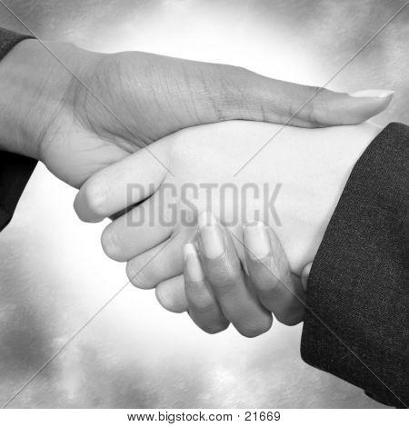 Female Handshake 03