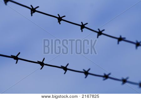 Barb wires close up bars blue border
