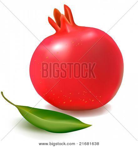Fresh pomegranate with green leaf. Vector illustration.