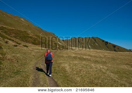 Hiker On A Mountain Pasture