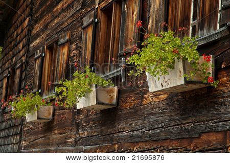 Timber Cottage With Flowers