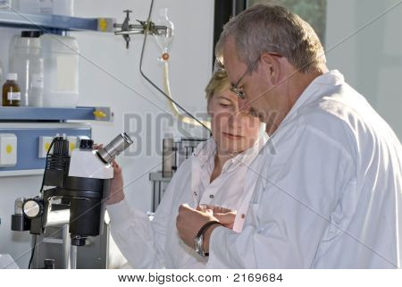 Work In Laboratory