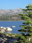 pic of loon  - clear day at loon lake california - JPG