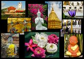 Buddhism In Thailand Collage - Background With Travel Photos Of Thailand Landmarks poster